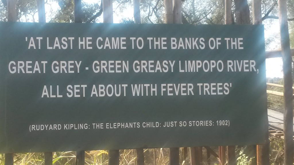 Greasy Green Limpopo